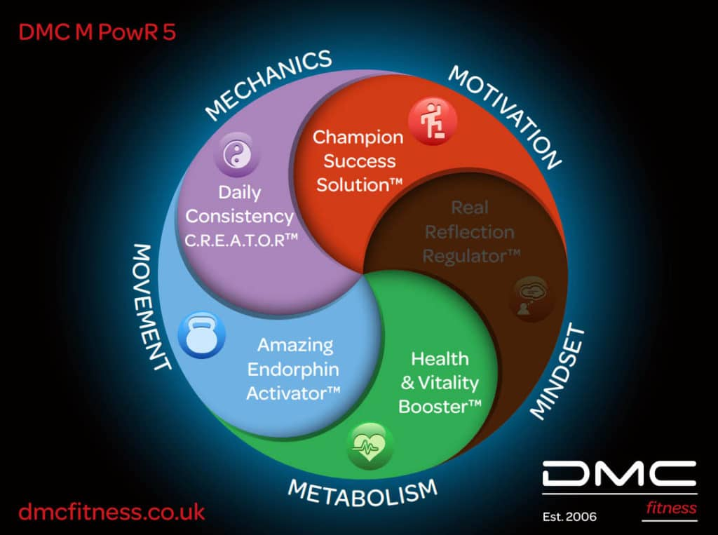 DMC Personal Trainer System